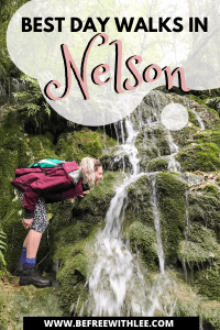 a pinterest image of this article on the best walks in Nelson