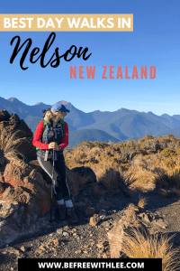 another pinterest image of this article on the best walks in Nelson
