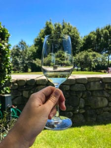 a beautiful photo of a glass of sav on one of my favourite marlborough wine tours