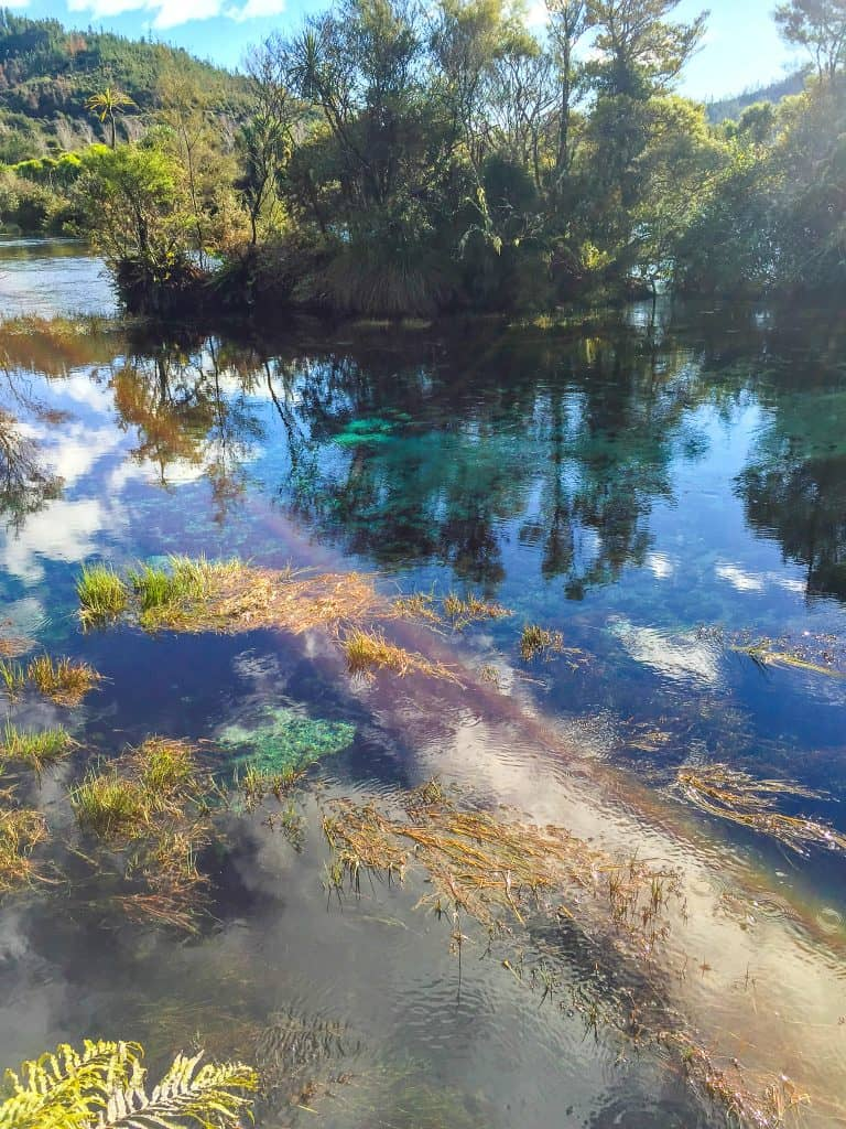 a stunning photo of pupu springs in golden bay