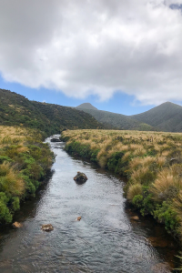a photo of a river along the pouakai circuit