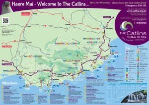 the catlins (1)