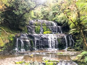 a photo of purakanui falls one of the best things to do in the catlins