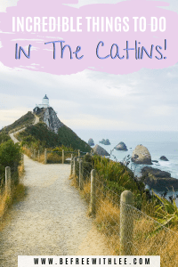 a pinterest image of this article on the best things to do in the catlins