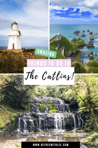 another pinterest image of this article on the best things to do in the catlins