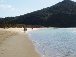 abel-tasman-national-park 1