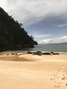 kayaking abel tasman 6