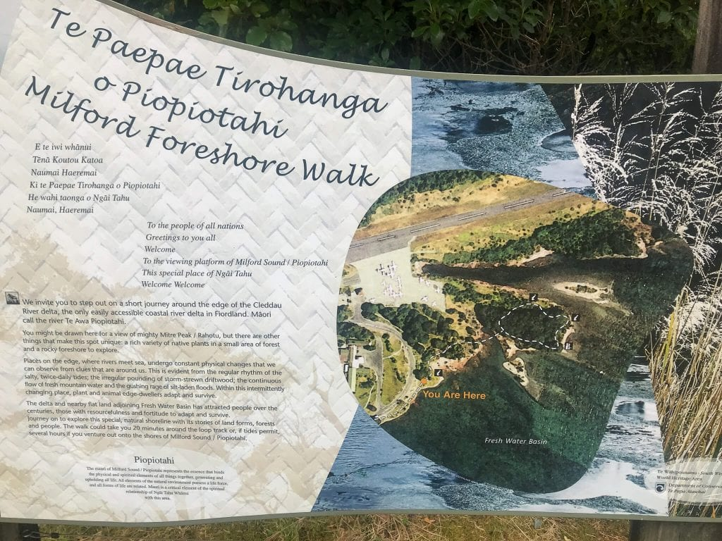 a photo of the foreshore walk on the way to milford sound swing
