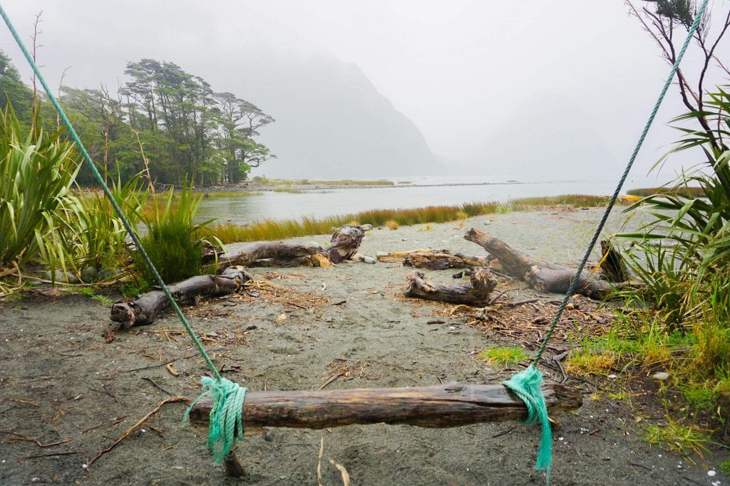 A photo of the infamous milford sound swing