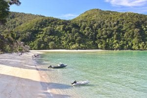 bark bay is the best abel tasman beach to camp at