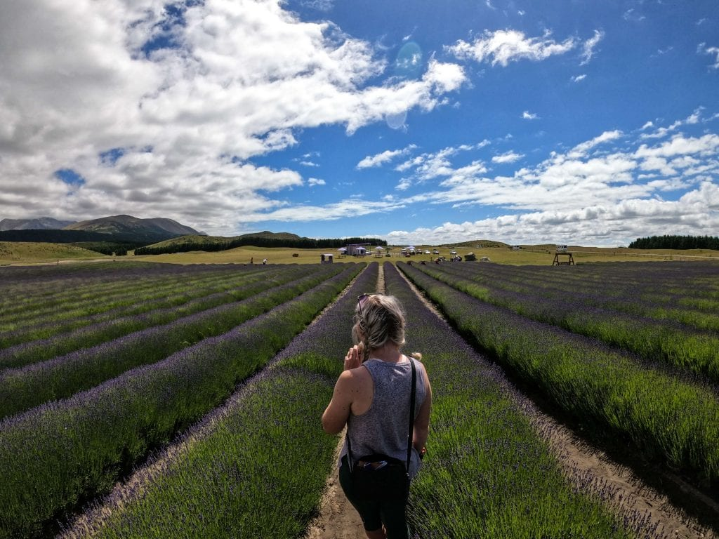 Lee at the lavender farm on the way to Mt Cook in the canterbury region new zealand