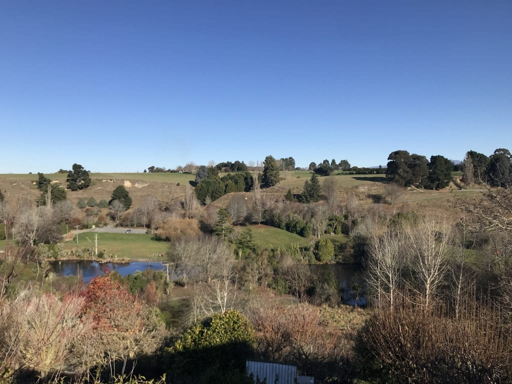 visiting the scenic reserve is one of my favourite things to do in Timaru