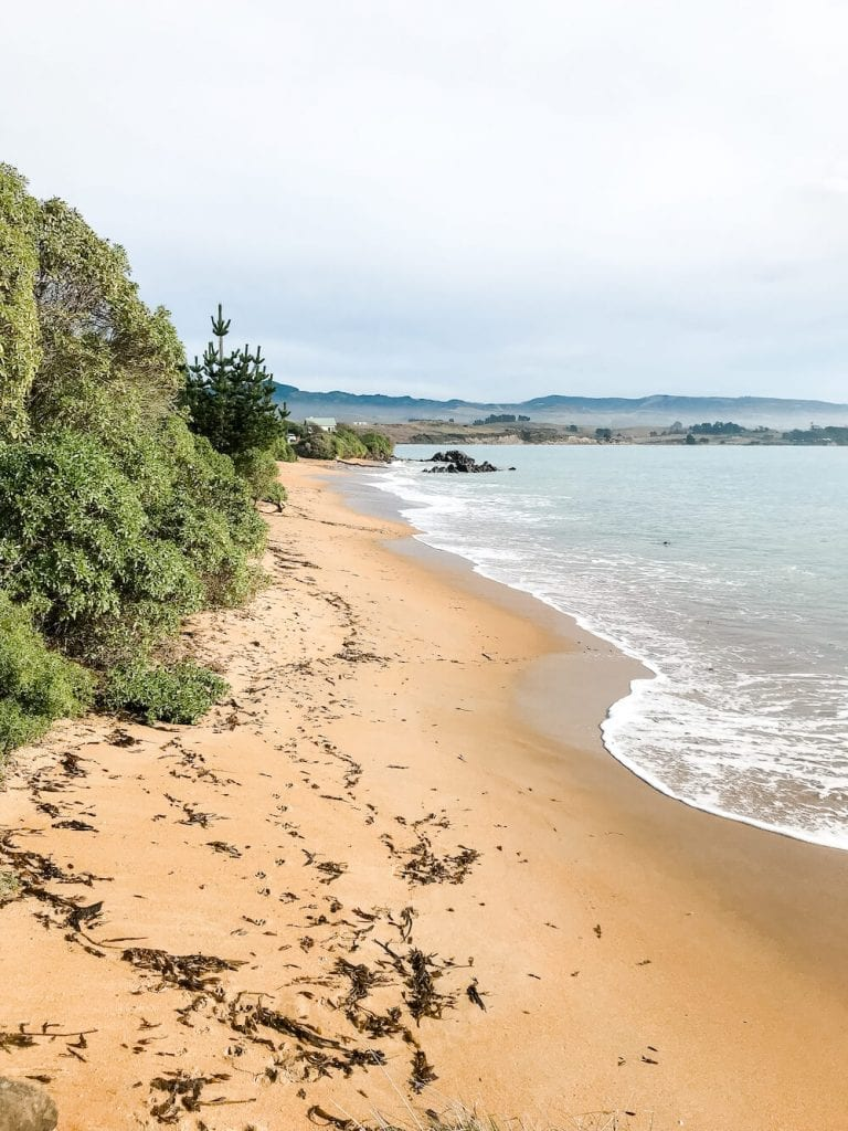 Moeraki is one of the most beautiful places and best things to do in Otago